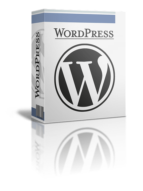 Wordpress CMS en Blog