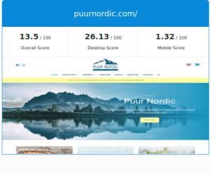 Wordpress non-responsive theme gratis google website seo check