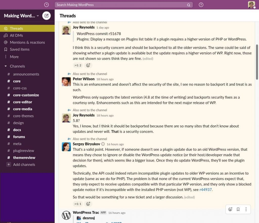 wordpress security issue plugins